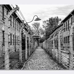 Auschwitz - Per Non Dimenticare - © Luca Cameli Photographer