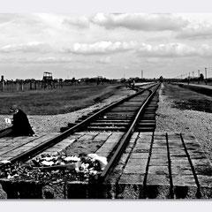 Birkenau - Auschwitz II - Per Non Dimenticare - © Luca Cameli Photographer