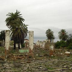 Habitat van o.a. hoefijzerslang