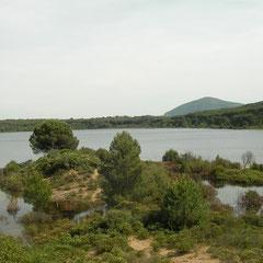 Het enige natuurlijke zoetwatermeer van Sardinië.