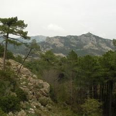 Het Corsicaanse bergland