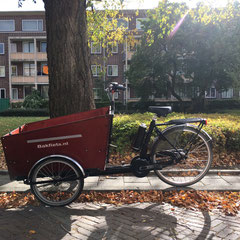 Bakfiets.nl Cargo Trike Bakfiets met Pendix eDrive ombouwset Middenmotor van FON.bike Fiets Ombouwcentrum Nederland