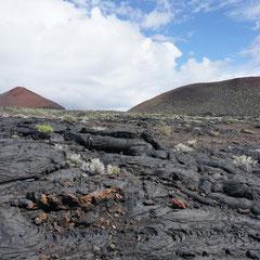 Faszinierende Lavaformationen auf dem Weg nach La Restinga.