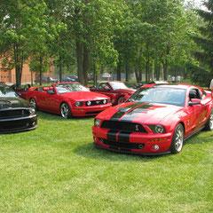 Lors d'une activitée du Club Montréal Mustang