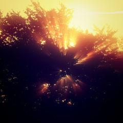 Sunexplosion