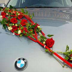 Einzeln aufgebracht Blüten.