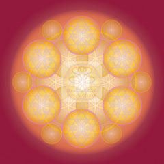 "Lebendiges Mandala, CL ""Lebendiges Geld No.2"" © Susanne Barth"