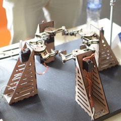 Imagen del robot. Tomado de htxt.africa