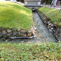 Gartengestalltung in Peterhof.
