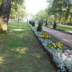 Foto vom Ausflug nach Peterhof.