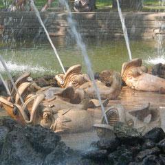 Springbrunnen im unteren Park von Peterhof.