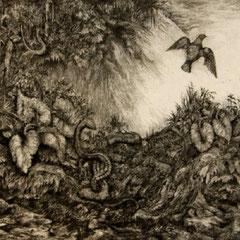 Vogel und Schlange - Radierung - 11 x 22 cm - Aufl. unbekannt - 1939 - WVZ.R192