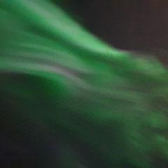Nordlichter über Reykjavík