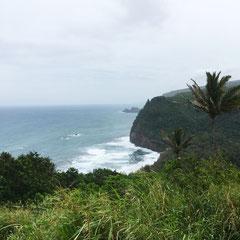 lookout-big-island-pololu