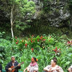 fern-grotto-kauai