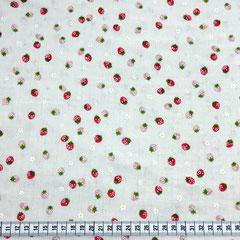 Erdbeer natur