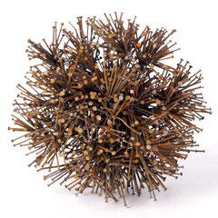 Der 7 Milliarden Virus Metall 2011  Größe  45cm