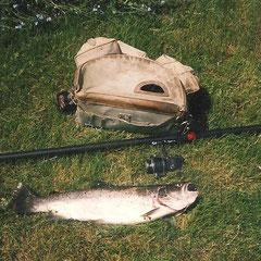 Truite 56 cm, 2Kg 100, prise dans l'Huisne