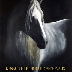 renaud-hadef-portugal-chevaux-commande