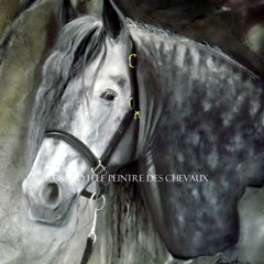 renaud-hadef-trait-percheron