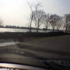 高速の両側は泥の海
