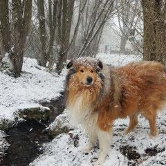 Ganz schön starker Schneefall
