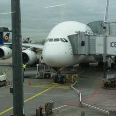 unser A 380 der uns nach Bangkok bringen wird
