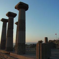 """in der Ruine des """"dorischen Tempels der Athena"""""""