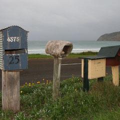 Typische Australische Briefkästen