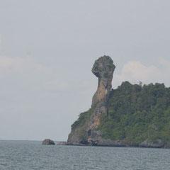 Chicken - Island