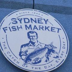 Besuch des Fischmarktes
