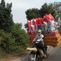 Transport auf Kambodschanisch