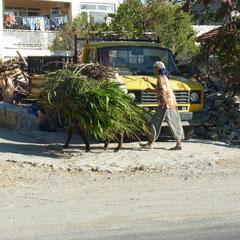 ein Transportmittel in  Datça