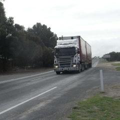 auch in Australien wird Scania gefahren