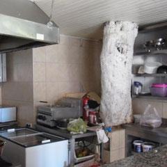 man beachte den Baumstamm in der Küche