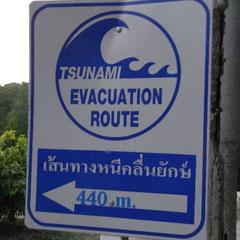 der Tsunami ist allgegenwärtig