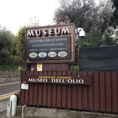 Ausflug ins Olivenölmuseum in Cisano