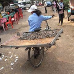 auf dem Weg in die Stadt.Sie verkauft Muscheln zum Essen.Diese Muscheln werden in der Sonne getrocknet und dann gegessen