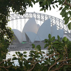 Sydney Oper mit Harbour Bridge
