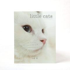 little cats(リトルキャット) 2015年10月 ラピスエンテ発行  写真/石橋絵