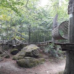 Ilsenburger, Kletterwald, Harz, Sachsen-Anhalt