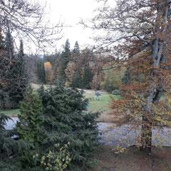 Blick aus dem Zimmer, Berg & Spa Hotel Gabelbach, Ilmenau, Thüringer Wald