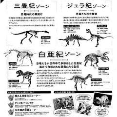 若狭路恐竜展チラシウラ