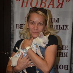 любимицу Дели после стерилизации забирают домой