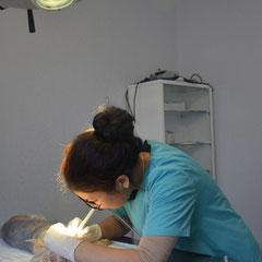 чистка зубов ультразвуковым скалером