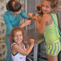 Арина и Нелли пришли постричь коготки своей любимице - пекинесу Лоле