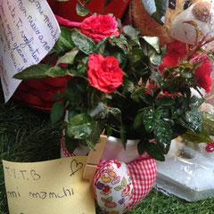 San Valentino 2013, Giorgia.