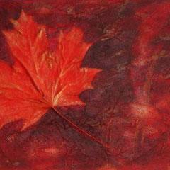 CANADA   30x60x4