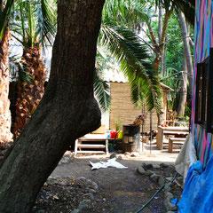 Résidence pour artiste au Huerto Roma Verde