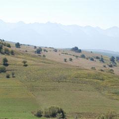 Zieder Gemarkung mit Karpathen als Kulisse